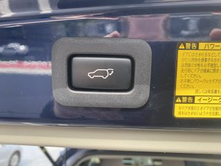 Auto rear gate button picture.